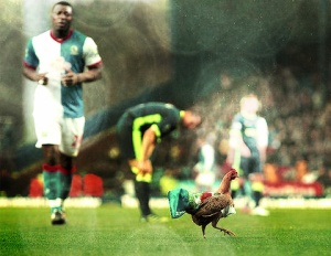 Blackburn Chicken Venkys Yakubu